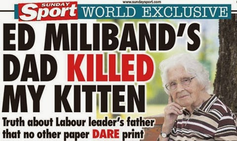 Kitten Death